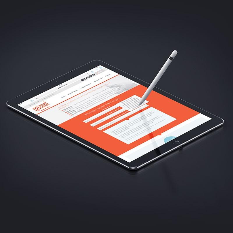 iPad Pro Website Design